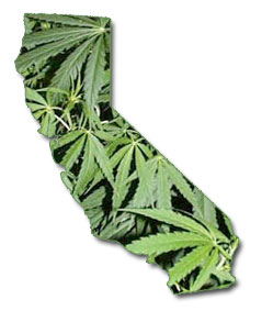 marijuana-california.jpg