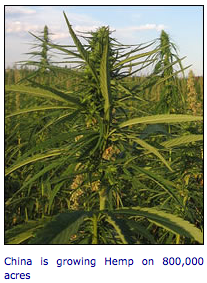 hemp biofuel research paper